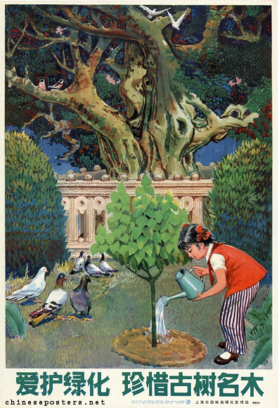 Cherish greening, treasure old and famous trees, 1983