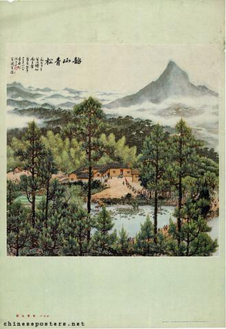 The pine trees of Shaoshan