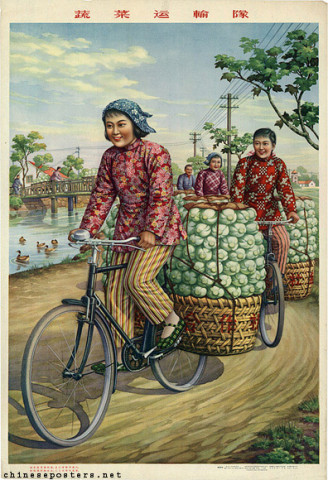 Vegetable transport team